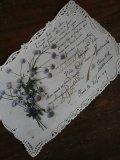 Carte Postale Chrysantheme Ajoure