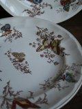 "K&G Luneville ""Papillons"""